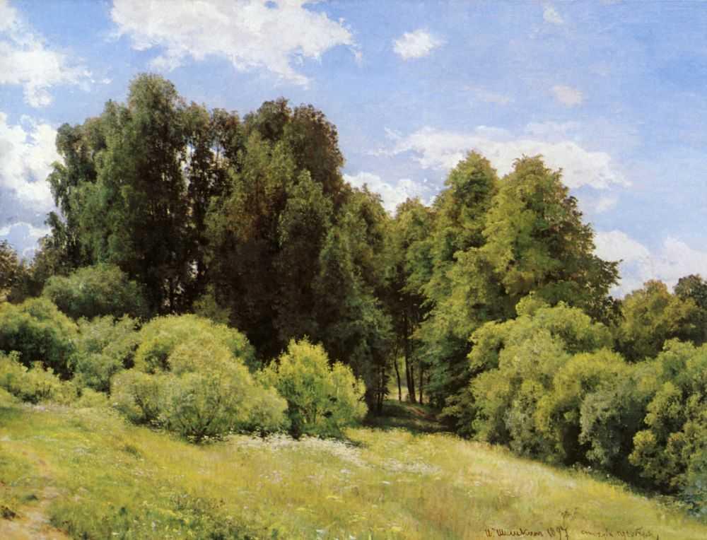 Шишкин Иван Иванович (1832-1898). Обсуждение на ... Лесные Дали Шишкин